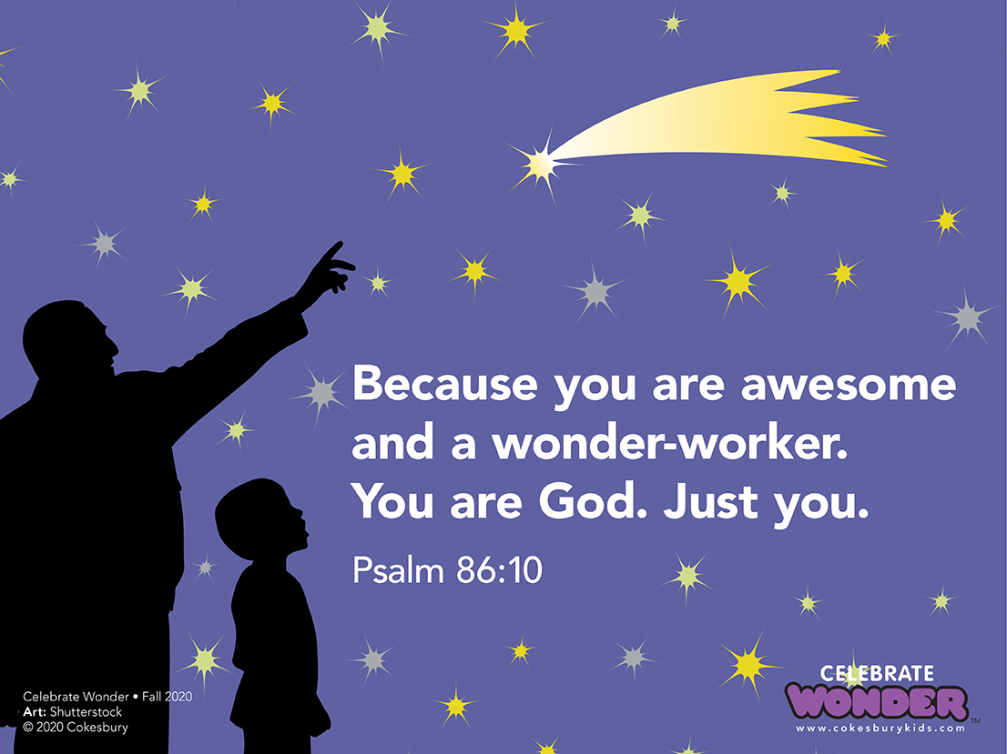 Celebrate Wonder because you are awesome